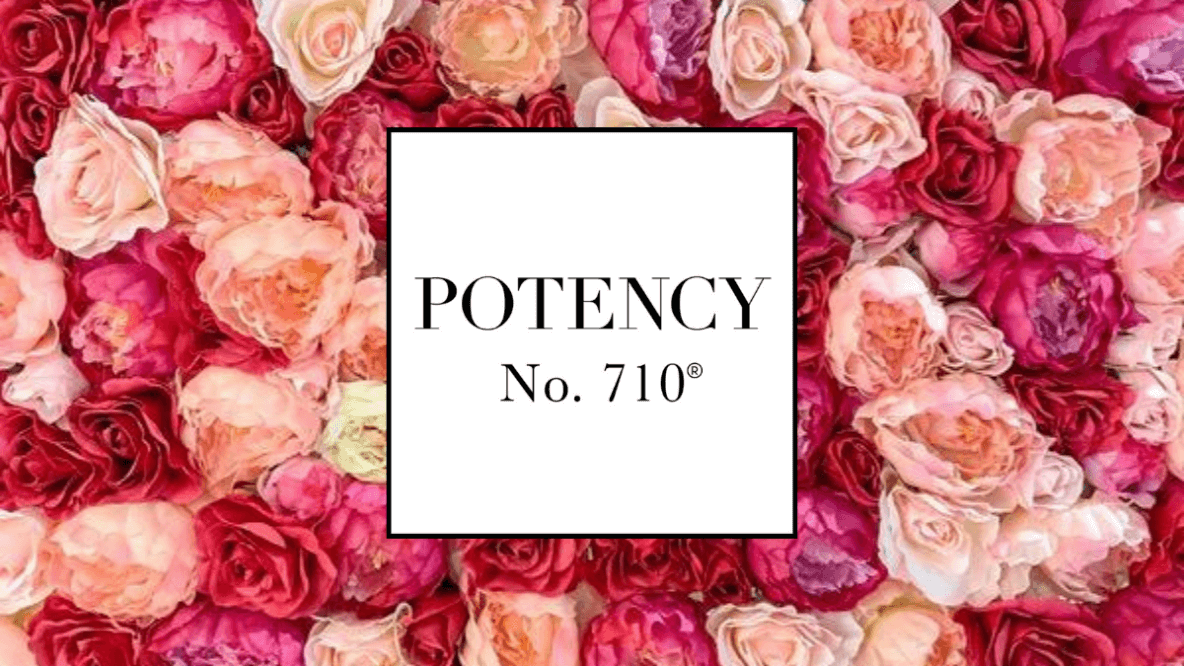 Potency No. 710 Rose Oil Gold Serum CBD CBG